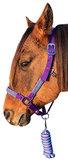 |SALE| Halster set Turquoise Purple_