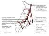 Anatomisch Hoofdstel Modena Hazel Crystal_