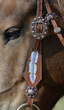 Western Hoofdstel Blue Feather_