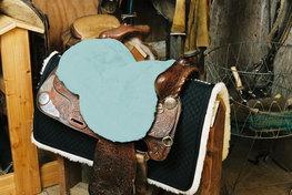 Seatsaver Western Baby Blue