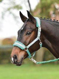 Halster Silverhorse