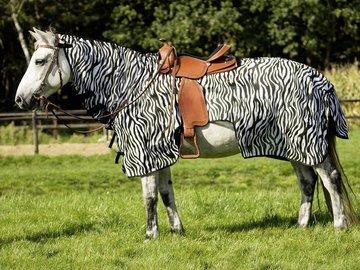 Uitrijdeken Western Zebra