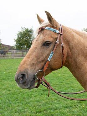 Western Hoofdstel Comanche