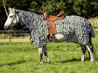 Uitrijdeken Western Montana Zebra